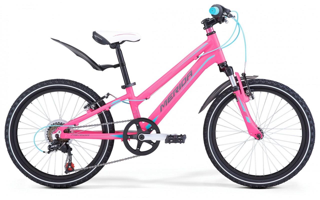 Велосипед Merida Matts J20 Girl 2018 розово-сине-серый one size